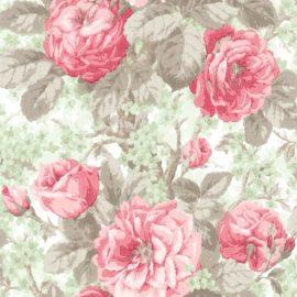 Обои English Rose en10108