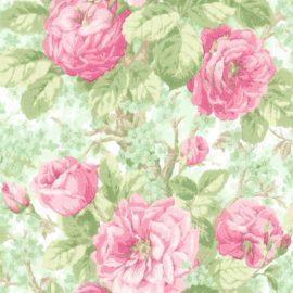Обои English Rose en10104