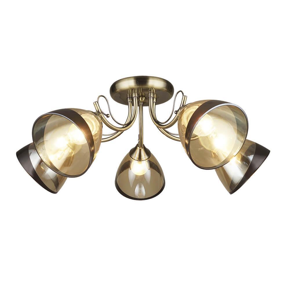 Потолочная люстра Wedo light Бареджо 66269.01.05.05