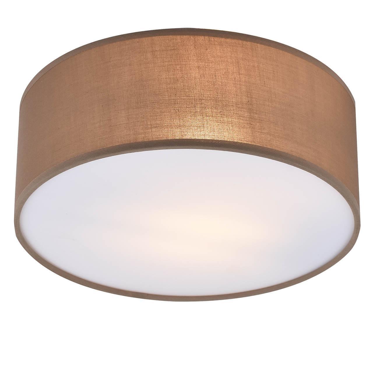 Потолочный светильник Hiper Toulouse H150-1