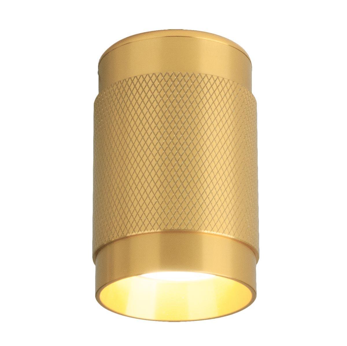 Потолочный светильник Elektrostandard Tony DLN109 GU10 золото 4690389148675
