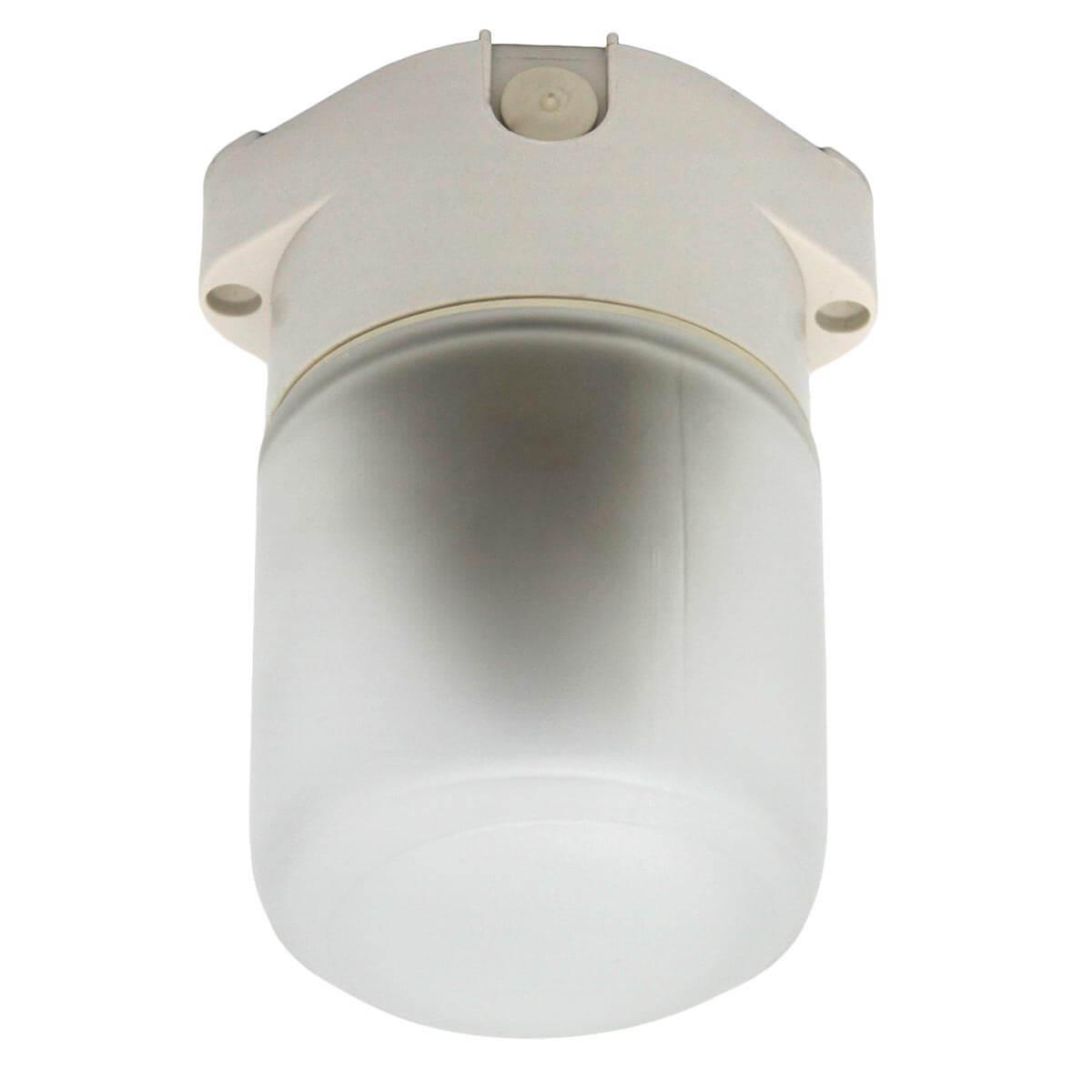 Потолочный светильник ЭРА Лидер НББ 01-60-001 Б0048030